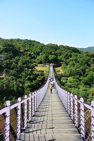 台北市白石湖吊橋 (1)