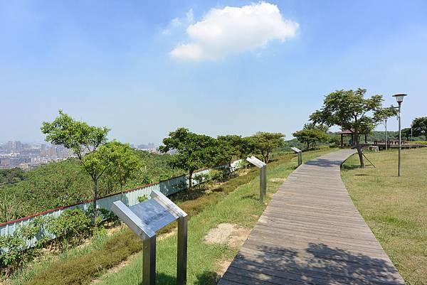 桃園縣桃園市虎頭山環保公園 (10).JPG