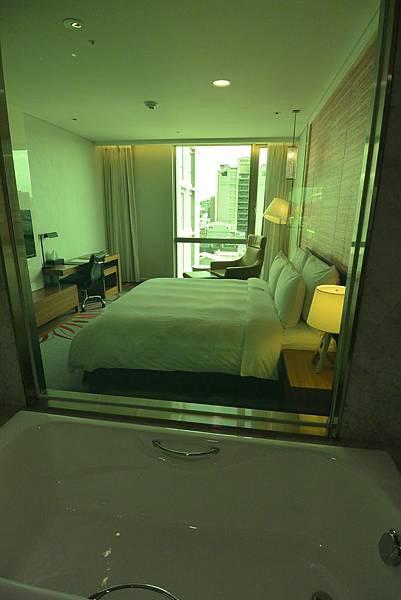 新竹市芙洛麗大飯店:Fancy迷戀客房 (15).JPG