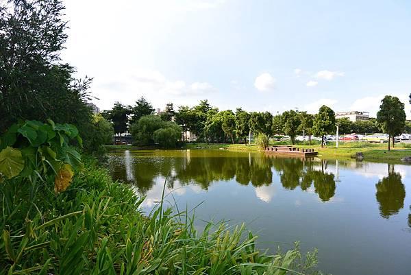 台北縣新店市裕隆公園 (13).JPG