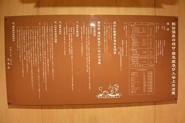 日本徳島県和の宿 ホテル祖谷温泉:男湯 渓谷の湯 (43).JPG