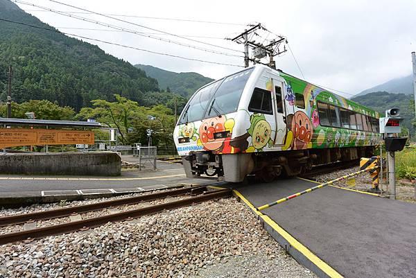 日本徳島県大歩危駅 (1).JPG