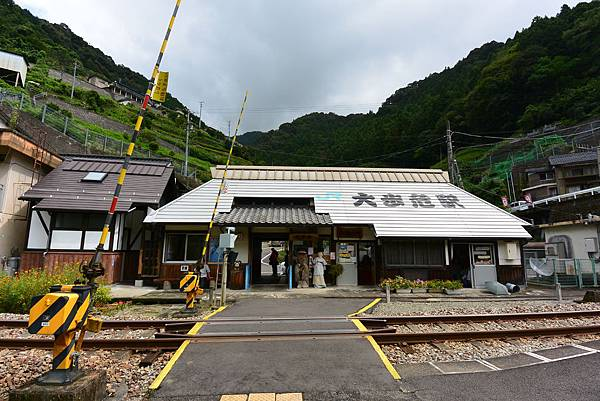 日本徳島県大歩危駅 (11).JPG