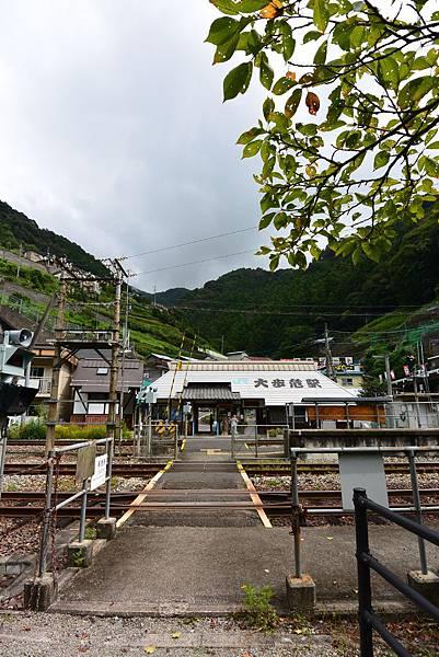日本徳島県大歩危駅 (13).JPG