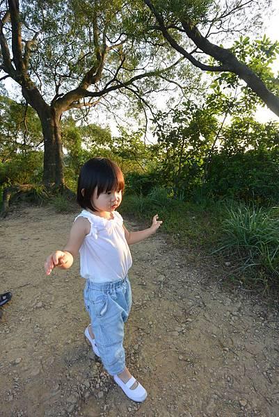 亞亞的攻頂野餐記 (22).JPG