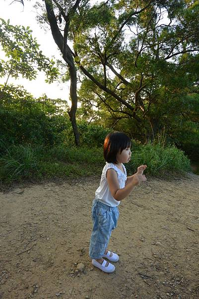 亞亞的攻頂野餐記 (26).JPG