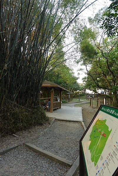 亞亞的攻頂野餐記 (27).JPG