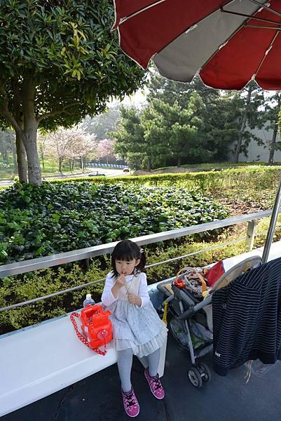 亞亞的日本迪士尼遊記 (5).JPG