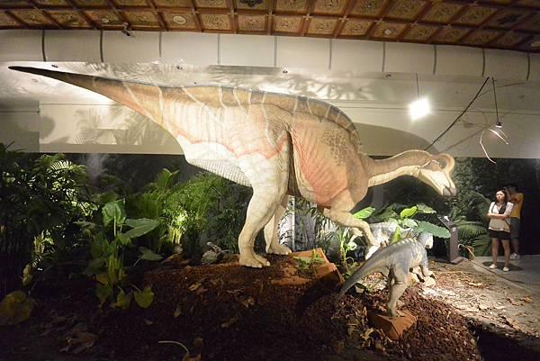 亞亞的白堊紀恐龍見面會 (7).JPG
