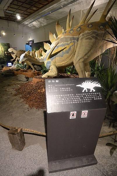 亞亞的白堊紀恐龍見面會 (12).JPG