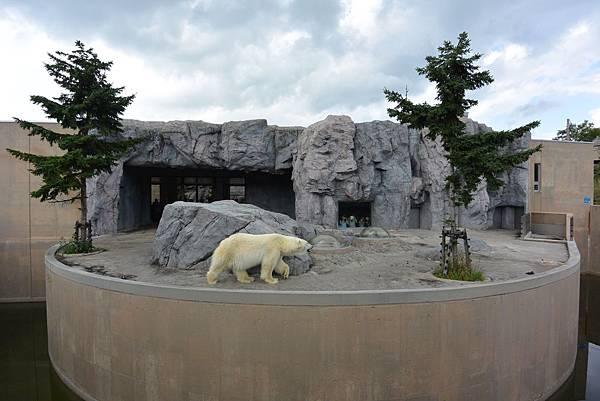 日本北海道旭川市旭山動物園 (1).JPG
