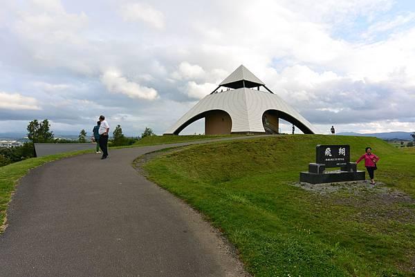 日本北海道美瑛町親子の木+北西の丘展望公園+マイルドセブンの丘 (3).JPG