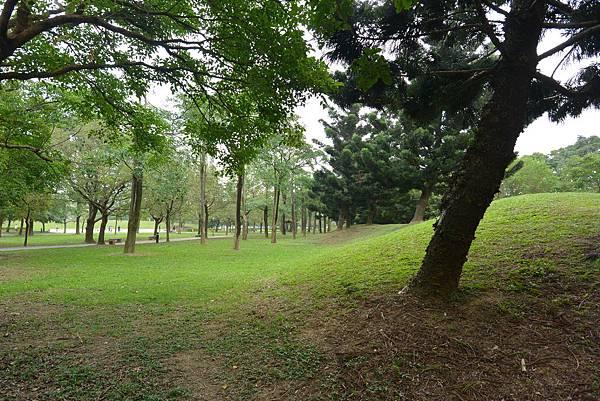 亞亞的野餐約會《大溪埔頂公園》 (11).JPG