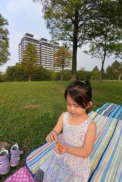 亞亞的野餐約會《大溪埔頂公園》 (19).JPG