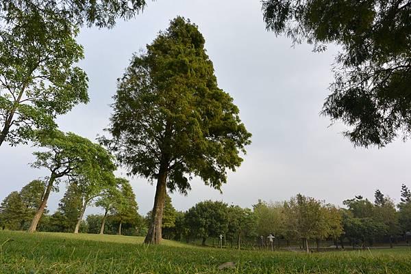 亞亞的野餐約會《大溪埔頂公園》 (23).JPG