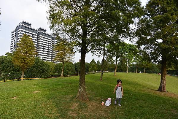 亞亞的野餐約會《大溪埔頂公園》 (45).JPG
