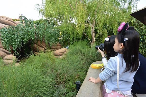 香港迪士尼樂園:童話園林 (51).JPG
