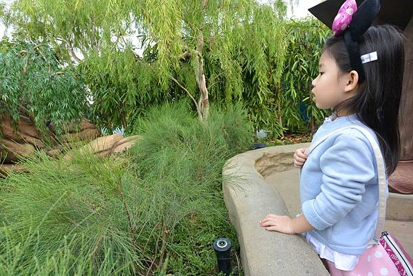 香港迪士尼樂園:童話園林 (52).JPG