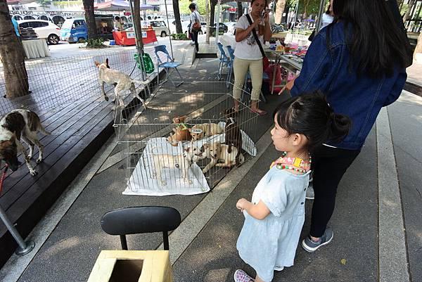 亞亞的台中市集散策 (9).JPG