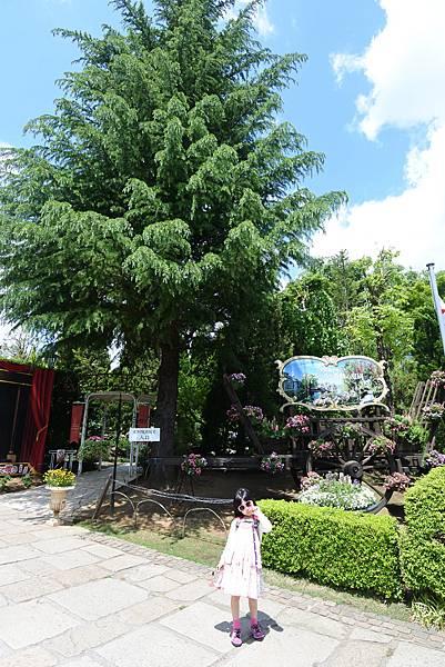 日本山梨県河口湖オルゴールの森美術館 (83).JPG