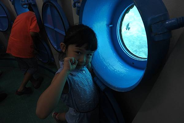 日本沖縄県ブセナ海中公園:海中展望塔 (55).JPG