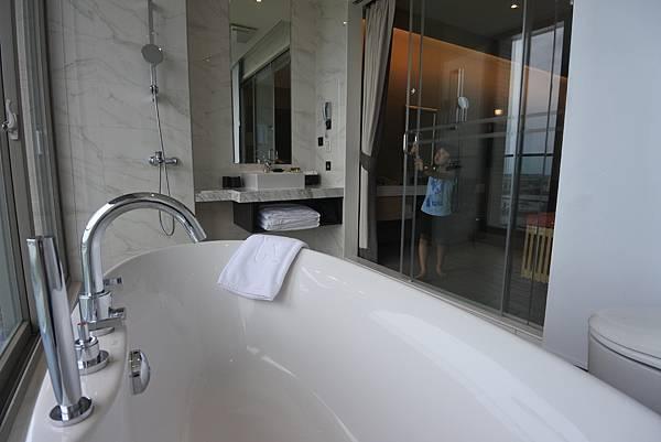 宜蘭縣五結鄉綠舞國際觀光飯店:嵐 山景雙人客房 (10).JPG