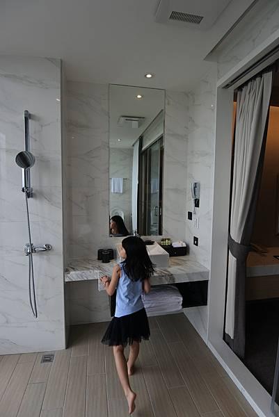 宜蘭縣五結鄉綠舞國際觀光飯店:嵐 山景雙人客房 (11).JPG