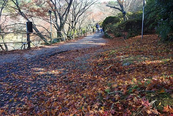 日本佐賀県御船山楽園 (1).JPG