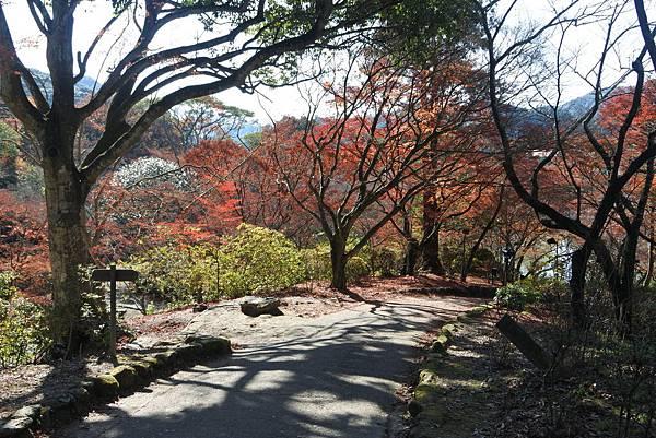 日本佐賀県御船山楽園 (10).JPG