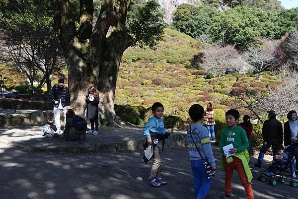 日本佐賀県御船山楽園 (12).JPG