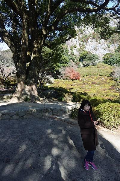 日本佐賀県御船山楽園 (15).JPG