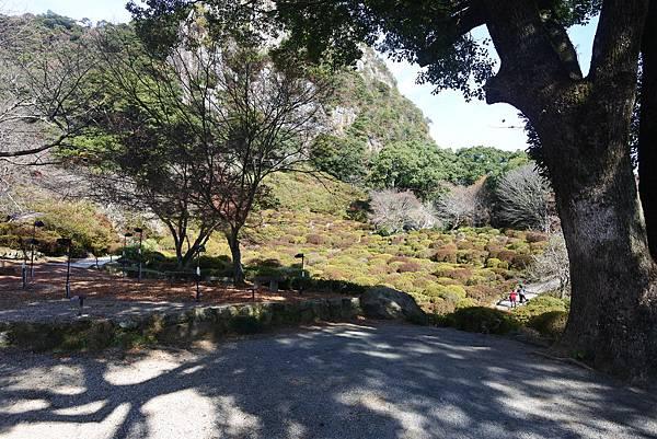 日本佐賀県御船山楽園 (32).JPG