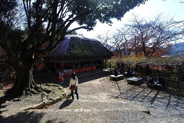 日本佐賀県御船山楽園 (33).JPG