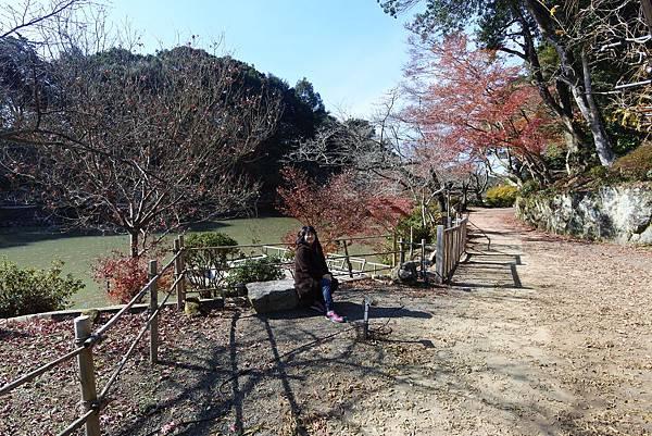 日本佐賀県御船山楽園 (36).JPG