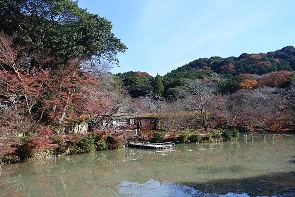 日本佐賀県御船山楽園 (42).JPG