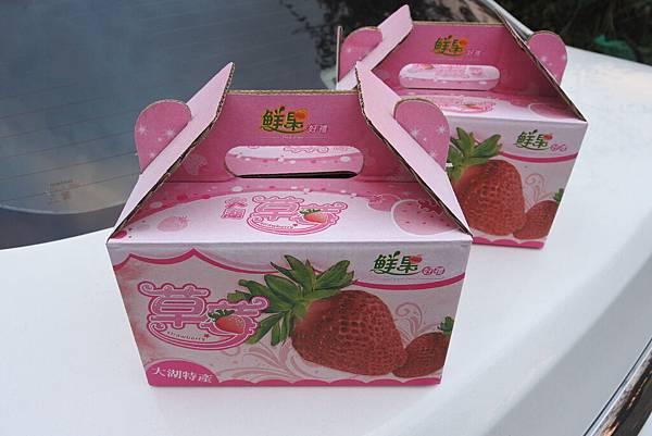 亞亞的馬拉邦草莓 (21).JPG
