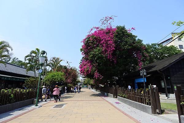 嘉義市檜意森活村 (7).JPG