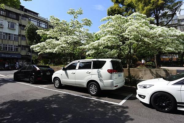 台北市新中公園 (15).JPG