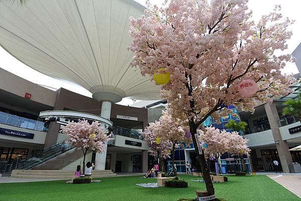 亞亞的櫻吹雪《林口三井Outlet Park》 (12).JPG