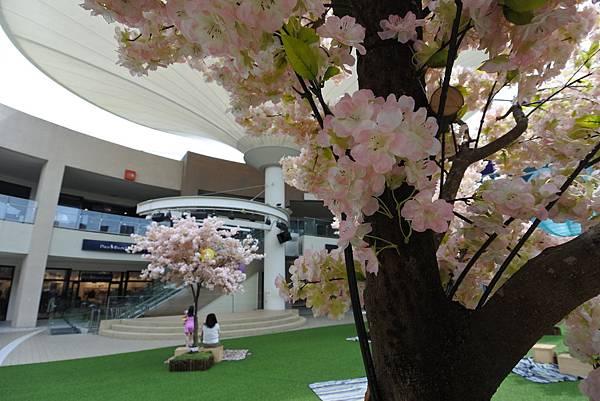亞亞的櫻吹雪《林口三井Outlet Park》 (13).JPG