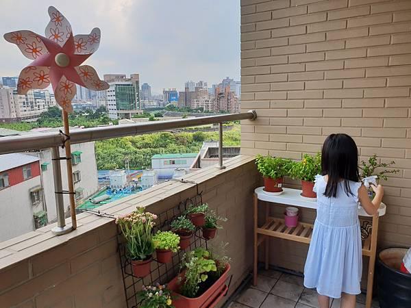 亞亞的園藝小幫手 (3).jpg
