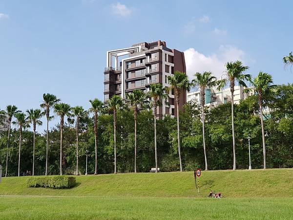 台北市華中河濱公園 (5).jpg