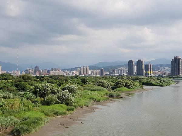 台北市華中河濱公園 (11).jpg