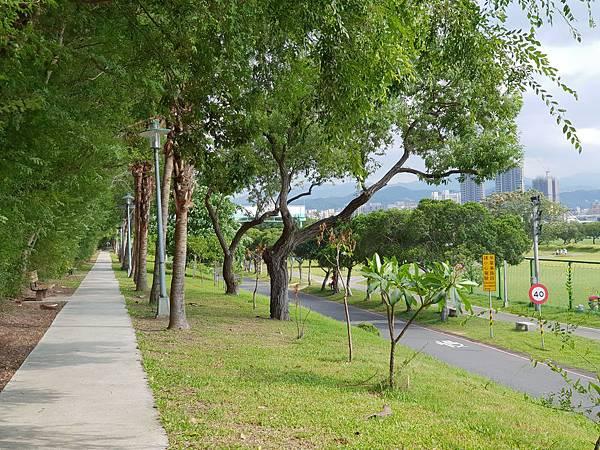 台北市華中河濱公園 (14).jpg