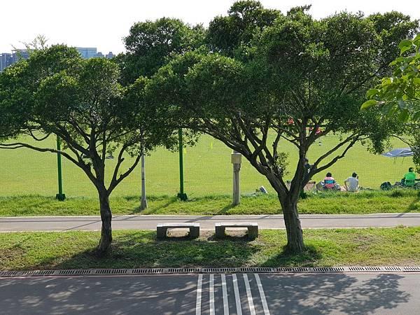 台北市華中河濱公園 (15).jpg