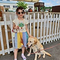 日本栃木県那須どうぶつ王国:レンタル犬 (1).jpg