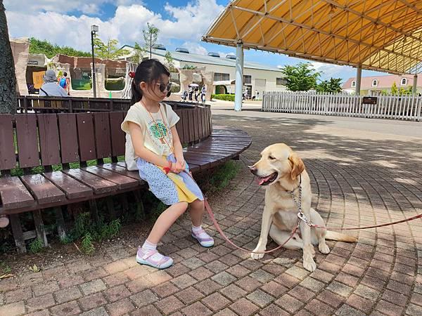 日本栃木県那須どうぶつ王国:レンタル犬 (4).jpg