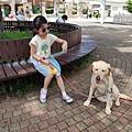 日本栃木県那須どうぶつ王国:レンタル犬 (3).jpg