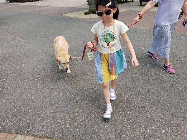 日本栃木県那須どうぶつ王国:レンタル犬 (2).jpg