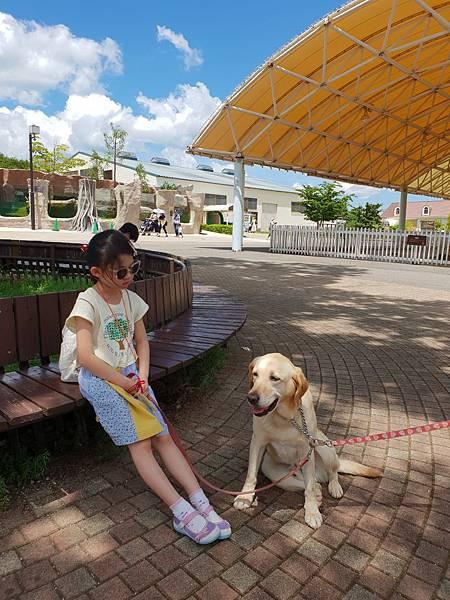 日本栃木県那須どうぶつ王国:レンタル犬 (5).jpg